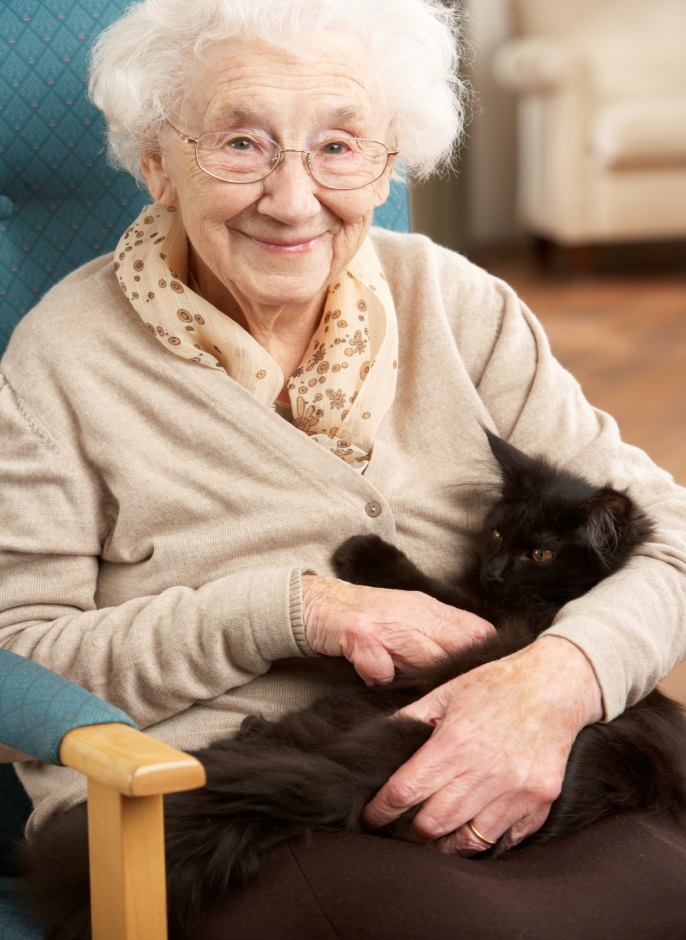 elderly care coral springs fl smiling woman holding cat