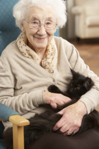 Find the right dementia care