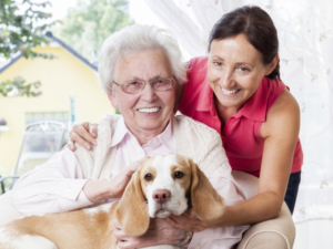 What are respite care services?